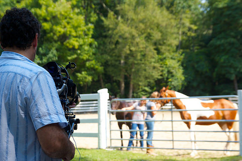 Michael Miceli captures Baldwin Studios horses in Deep River CT - Miceli Productions HD