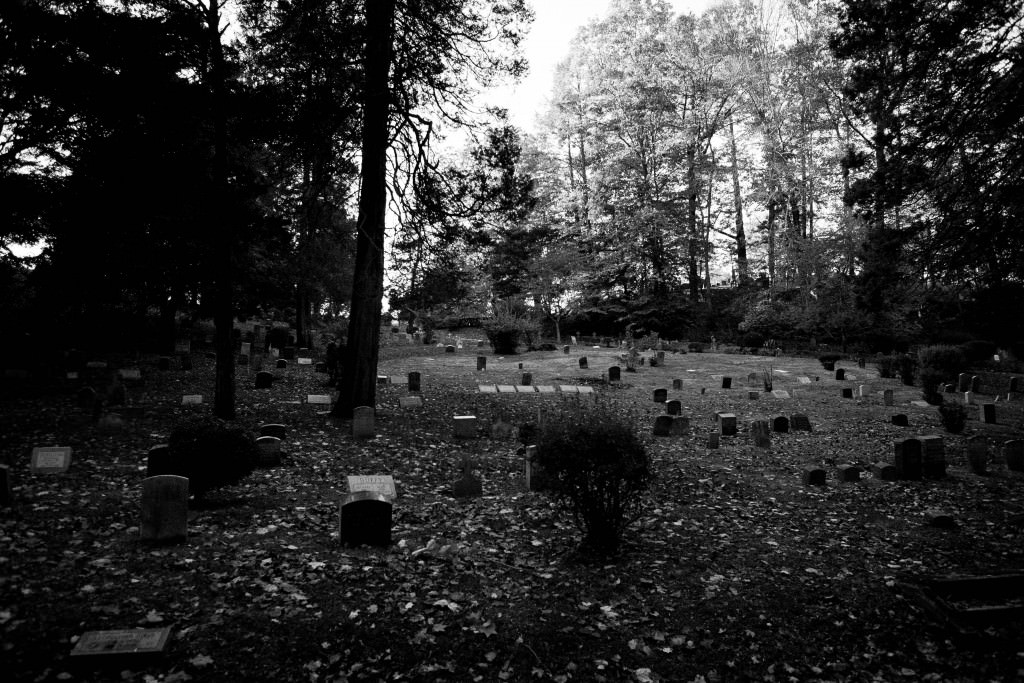 cemetery, grave, sleepy hollow, black and white, dead, graveyard, zombie